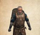 Castillian Knight