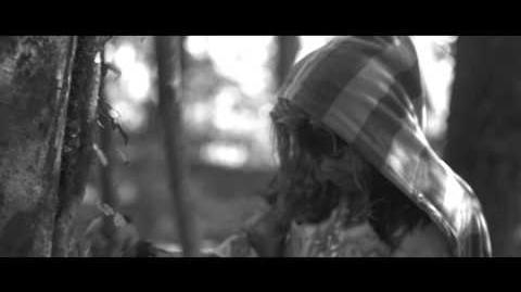 Vídeo CH 31