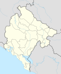 Ubi Montenegro