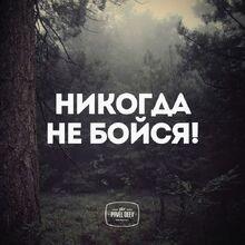 Ne Boysya