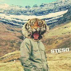 Steso