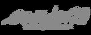 Evangelion 2.0 Logo