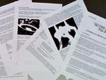 Documentos clasificados Segundo Impacto