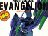 Neon Genesis Evangelion Newtype 100% Collection/Galería