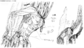 Simulation Bodies artwork (NGE).png