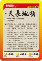 LongSkyFloorDay2