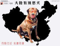 Tung is mainland dog