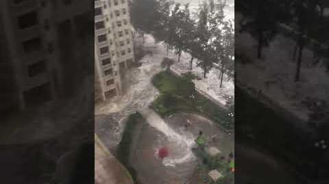 天鴿10號風球風暴潮 杏花邨海水打到去大廈入口
