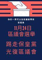 2019年區議會選舉投票文宣