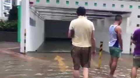 打風系列:杏花邨水浸停車場 所有在地底汽車全部報銷