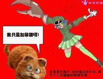 綠壩娘和加菲貓