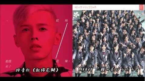 拾音社《红棉花瓣》VS AKB48「桜の花びらたち」