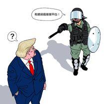Cuson Lo - Donald Trump & Popo
