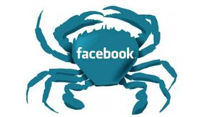 Facebook crab