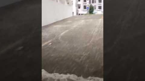 打風系列:杏花邨停車場 無喇無喇