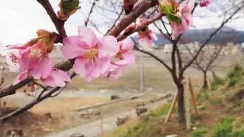 """【私たちにできること篇】3.11、検索は応援になる。 Search for """"3.11"""". Be a part of Tohoku recovery"""