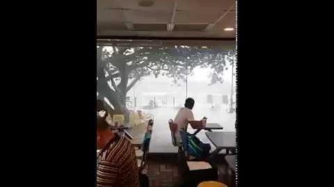 打風系列:坐麥當勞有無敵大浪景