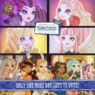 Facebook - one more day to vote