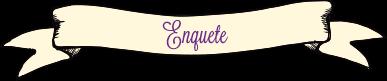 Enquete2
