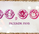 Facebook/2014