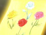 Buquê Encantado das 4 Rosas