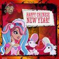 Facebook - happy CNY.jpg