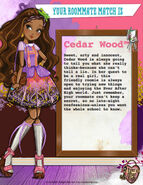 Who's the Most Charming Roommate for You - Cedar Wood