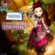 Facebook - Raven the winner