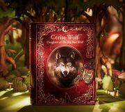 Facebook - Cerise Wolf box reveal