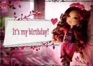 Facebook - Briar's birthday II