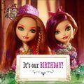 Facebook - the twins' birthdays.jpg