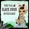 Facebook - black swan time.jpg