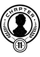 Chapter11-quinn