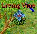 Living Vine