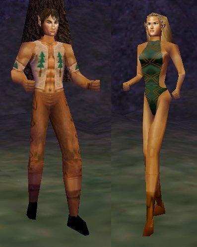 Wood Elf | EverQuest Wiki | FANDOM powered by Wikia
