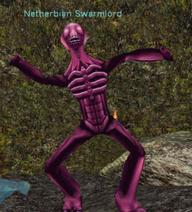Netherbian Swarmlord