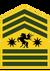 Gruenor sergeant major