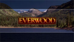 Everwood Season 4 logo