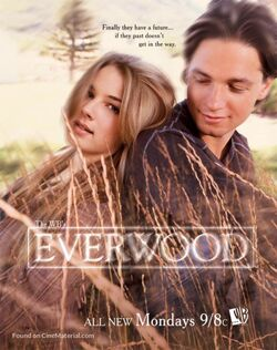 Everwood (Season 2) poster