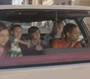 Everybody Hates Driving