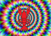 PHYCADELLICLOBSTER
