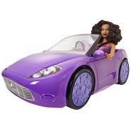 Trichelle SIS Car