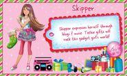 Skipperinfo