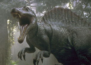 JP Spino