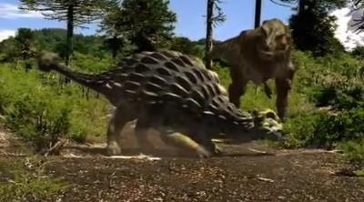 Anky vs Rex