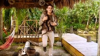 Everglades Daniel
