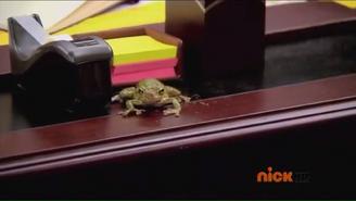 Lilyasafrog2