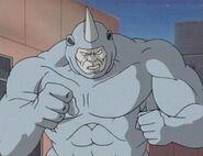 Rhinorunnig