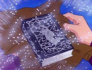 The Nameless Book