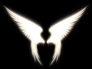 Angel Wings by Iaenic